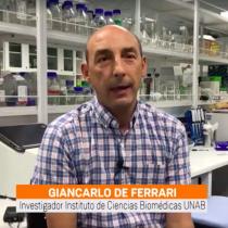 Homo Science: El estudio de Giancarlo de Ferrari sobre el papel de las vías de señalización celular en el Autismo