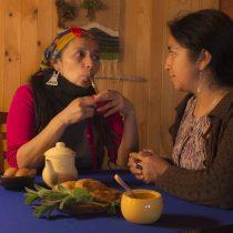 Quinta versión del Festival Internacional Ficwallmapu abordará las diversidades sexuales y afectivas desde la óptica de los pueblos originarios