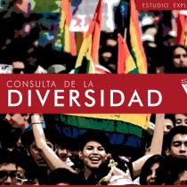 Consulta de la Diversidad:  98,7% de la comunidad LGTBIQ+ respalda una nueva Constitución