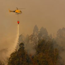 Incendios forestales consumen más de 1.200 hectáreas en la región del Biobío y cuatro comunas están bajo Alerta Roja