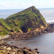 Prensa internacional reacciona a polémica venta de Isla Guafo a US$ 20 millones