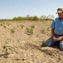 Crisis hídrica: crónica de una muerte anunciada y de por qué hay que rediseñar las áreas verdes