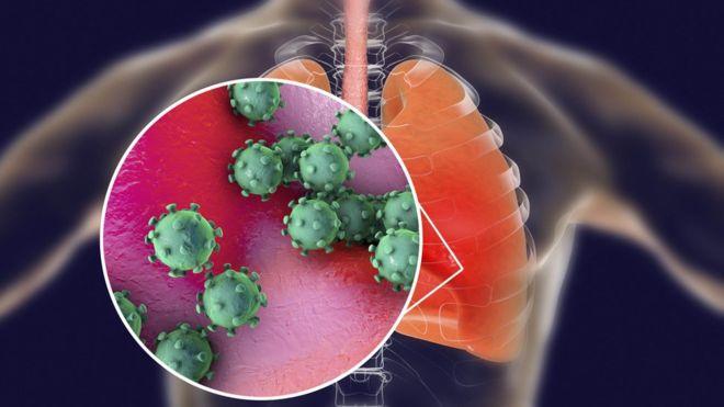 Coronavirus: los nuevos detalles que revela el estudio