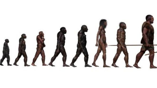 """El misterioso ancestro """"fantasma"""" de los humanos descubierto en África"""