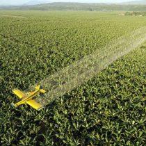 Las empresas que ganan millones vendiendo pesticidas peligrosos al mundo en desarrollo