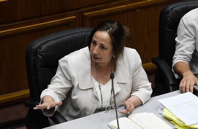 Sepúlveda apela a casos de Oscar Pérez y Mauricio Fredes para sustentar la acusación constitucional contra Guevara
