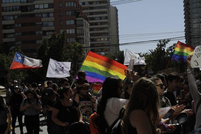 Disidencias sexuales y proceso constituyente: entre silencios y desafíos