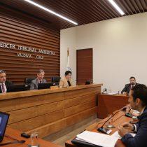 Tribunal Ambiental de Valdivia acogió parcialmente recurso de Celco y rebaja la millonaria multa por derrame de residuos en río Cruces