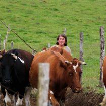 La emprendedora chilota que espera con mate cebado y labores de campo a los turistas