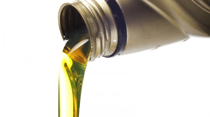 Ford Transit usará combustible renovable en base a aceite de cocina