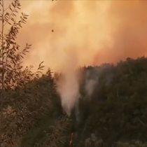 Conaf cierra Parque Nacional Radal Siete Tazas por incendio forestal en la zona