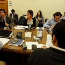 Cámara rechaza gran parte del proyecto de protección del empleo e iniciativa será discutida el martes en comisión mixta