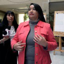 Diputada Castillo (RD) molesta por rechazo de proyecto que otorga prisión domiciliaria a madres que no hayan cometido delitos graves