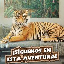 Buin Zoo realiza webserie para mostrar el cuidado de los animales