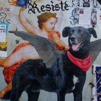¿Un proyecto justificado?: Ley Sticker, intentando extirpar el tumor indeseado del arte callejero