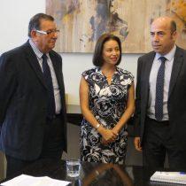 Senadores solicitan a Contraloría revisar el contrato entre el Gobierno y Hyundai por Puente Chacao
