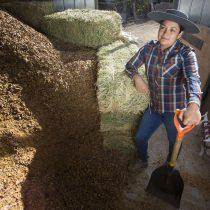 Pequeña ganadera de San Esteban enfrenta sequía con granja sustentable y dieta especial para sus animales