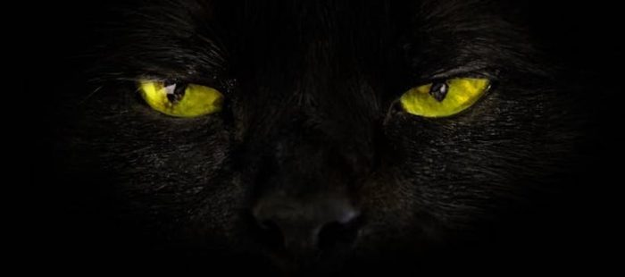 Viernes 13: Por qué somos supersticiosos (la explicación neurocientífica)