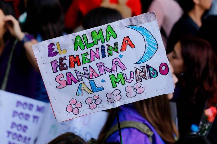 """""""Ni la tierra ni las mujeres son territorios de conquista"""": ecofeminismos y el proceso constituyente"""