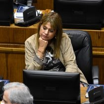 Teletrabajo a lo Van Rysselberghe: el mea culpa de la presidenta UDI tras su votación en la cama y con copa en mano