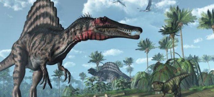 """El único y """"peligroso"""" lugar en el que convivieron 3 de los dinosaurios carnívoros más grandes que habitaron la Tierra"""