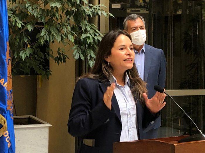 """Diputada Joanna Pérez acusa """"triquiñuelas y obstáculos"""" de bancadas oficialistas para evitar votación de ley que prohíbe cortes en servicios básicos"""