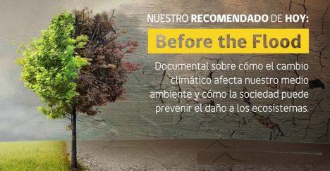 #MMAencasa, la campaña ambiental para tomar consciencia durante la cuarentena