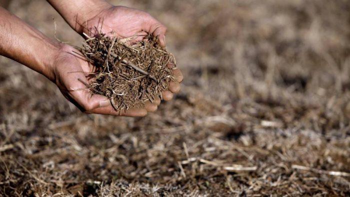 ¿Hay avance en los cambios que trae la nuevacontribución de Chile para mitigar el cambio climático?