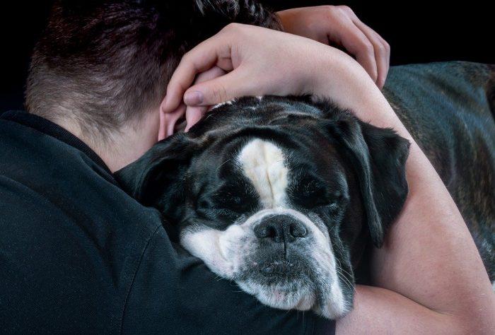 Las mascotas se transforman en la expresión de cariño durante la cuarentena