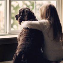 Tener mascotas ayuda a sobrellevar el aislamiento por el coronavirus