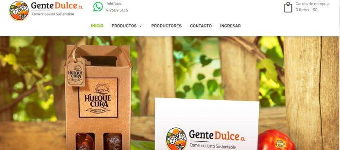 Lanzan campaña digital para ayudar a emprendedores de la Región del BíoBío