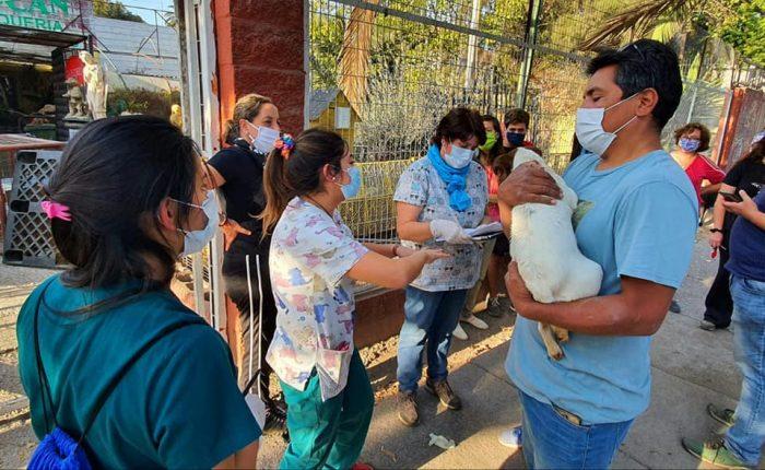 Los marginados de la RM: alcaldes rurales acusan que estrategia centralista de la pandemia los convierte en zona de sacrificio