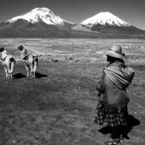 Negando el Patrimonio Cultural Indígena