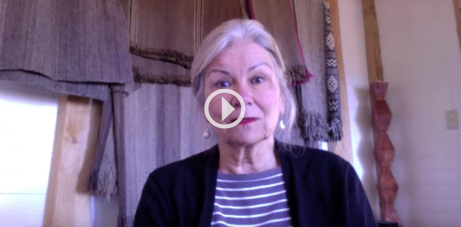 Ana María Stuven y los vacíos de la Ley de Indulto Conmutativo: