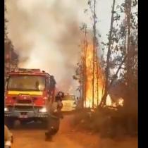 Decretan alerta roja en Valparaíso por incendio forestal fuera de control en sector La Pólvora