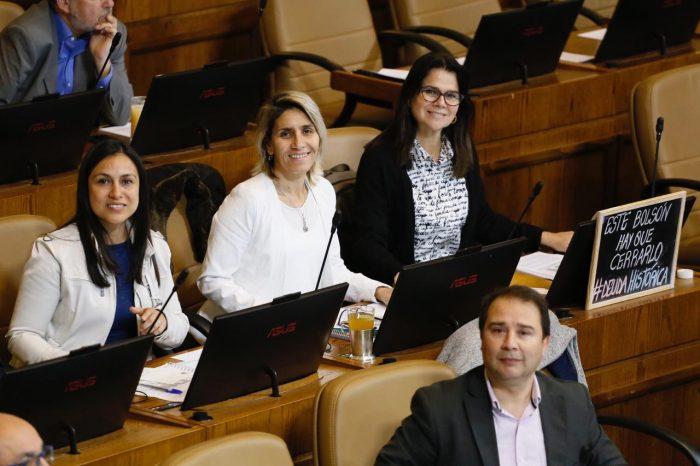 Diputadas RN piden a ministra de la Mujer incorporar campaña contra la violencia doméstica en canastas de alimentos que entrega el Gobierno