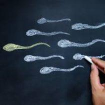 La contaminación silenciosa que nos está robando la fertilidad