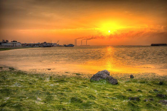 Chile agotó todos sus recursos naturales renovables, disponibles para 2020