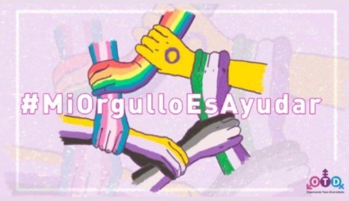 OTD Chile lanza campaña de donaciones para la comunidad trans más vulnerable
