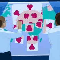Coronavirus: lo que los científicos han descubierto sobre el covid-19 en los 6 primeros meses de la pandemia