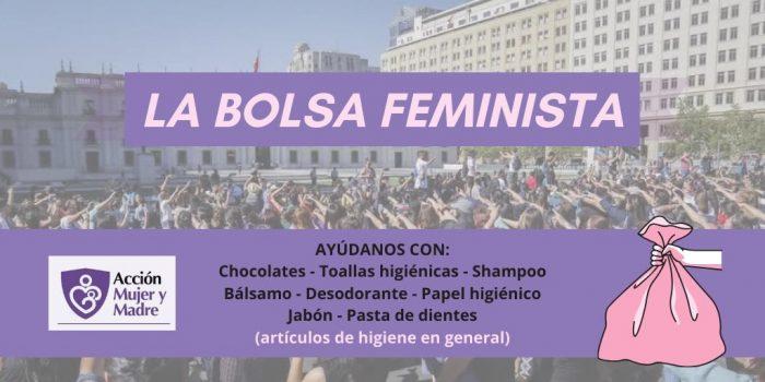 """""""Bolsa Feminista"""": ONG Acción Mujer y Madre reúne artículos de higiene íntima, aseo personal y preservativos para entregar a mujeres más vulnerables"""