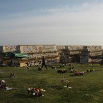 """En la antesala del Día del Padre: Ministra Rubilar informó que todos los cementerios del país permanecerán cerrados este fin de semana para """"evitar aglomeraciones"""""""