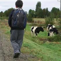 ¿Escuelas rurales desconectadas o desconexión con las escuelas rurales?
