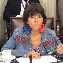 Diputada Girardi anunció proyecto de ley para prohibir suspensión unilateral de ferias libres durante la pandemia
