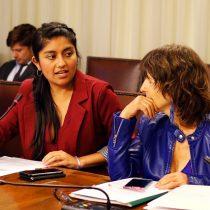 Diputadas Rojas y Girardi presentan proyecto que prohíbe cancelación de matrícula a estudiantes por no pago