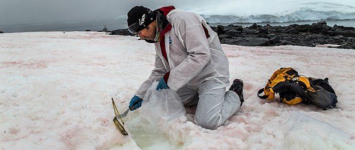 Agujero en la capa de ozono en Antártica influye en las precipitaciones en el hemisferio sur