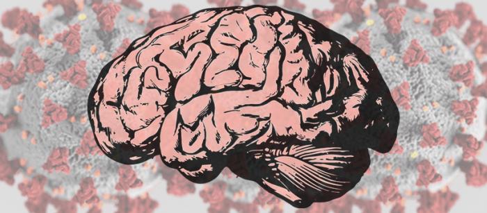 Neurociencias: el COVID-19 puede enfermar el cerebro