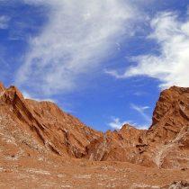 No sequemos el desierto: el oro del Atacama está en la vida única que lo habita