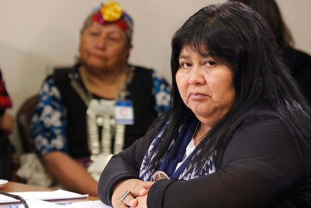 """Diputada Nuyado rechaza fórmula de escaños reservados: """"Primó la actitud discriminatoria, clasista y racista de la derecha, la izquierda y del centro a los pueblos originarios"""""""