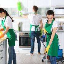 Empleo doméstico: igualdad y formación profesional